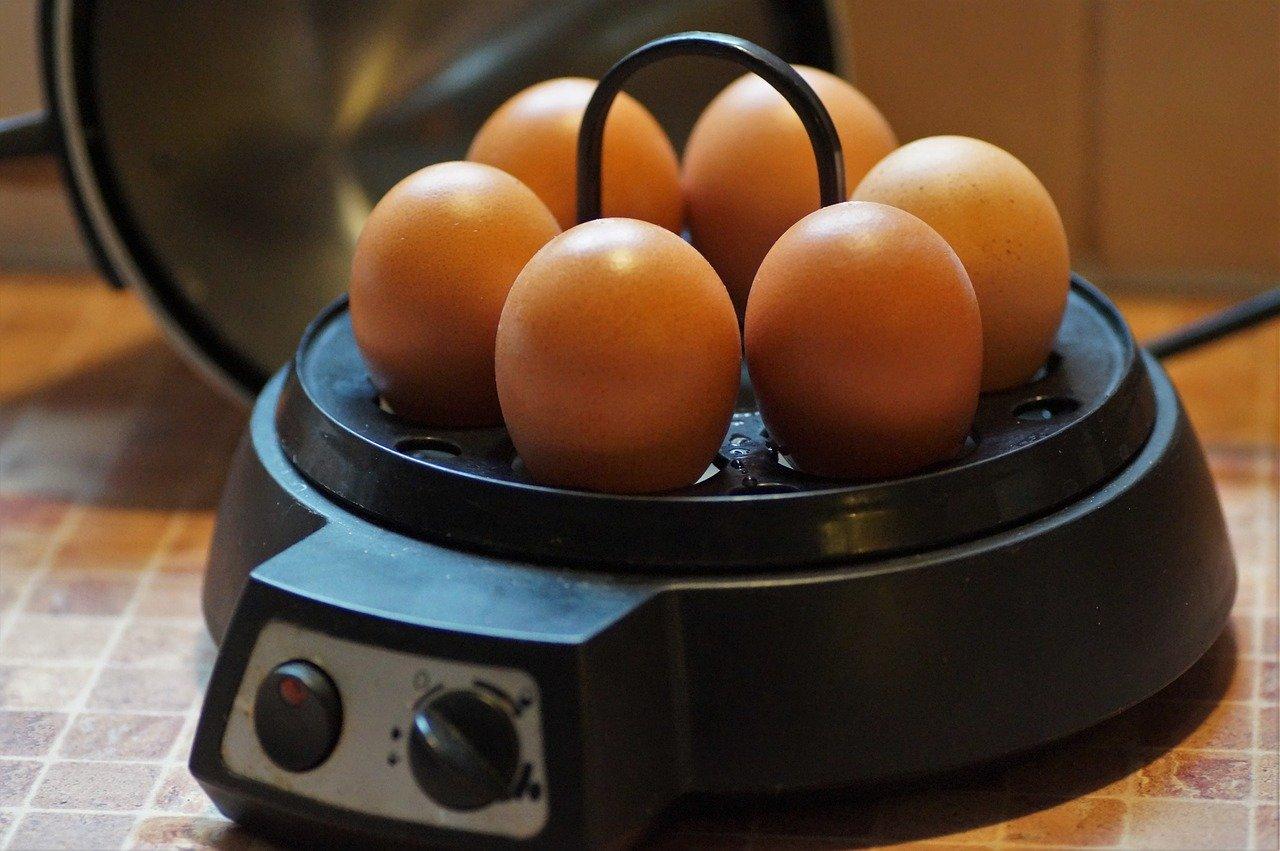 eierkoker met eieren